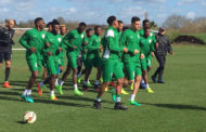 Nigerian Football Supporters Club Optimistic Of Eagles Qualification For World Cup