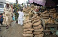 Nigeria Begins Yam Exports To Europe, US
