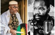 Dad Would Be Proud Of Nnamdi Kanu's Biafra Agitation — Ojukwu's Son