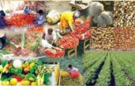 Food Prices Crash In Asaba
