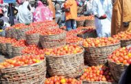 Prices Of Tomatoes, Pepper, Onions Drop By 45%